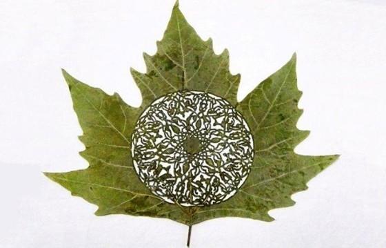poesie sur feuilles