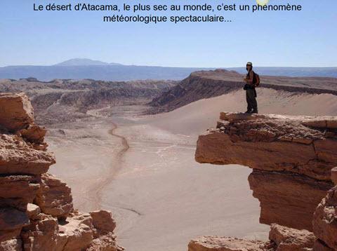 Atacama le desert des fleurs