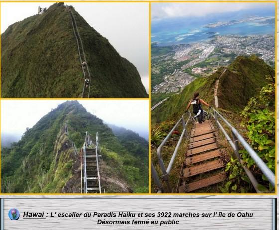 Escaliers du monde2.